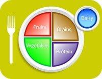 UAE-Personal-Trainers-Food-Plate-Representation