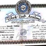Samer - Kickboxing & Martial Arts In Dubai - Certificate 2