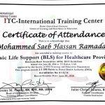 Sharjah PT Mohammed - Healthcare Certificate