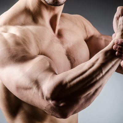 building bigger arms with a personal trainer in the UAE
